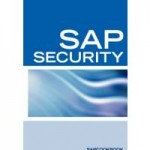 SAP Security Training Online