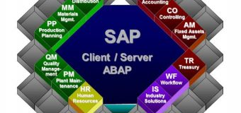 SAP Applications and Uses
