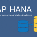 SAP HANA high performance analytic appliance