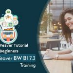 SAP NetWeaver BW 7.3 Online training