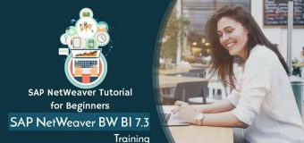 SAP NetWeaver BW 7.3 Online training