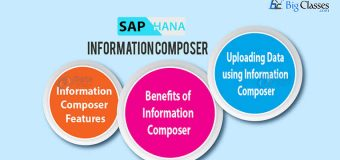 SAP HANA Information Composer