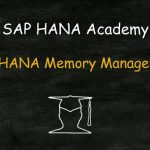 SAP HANA Memory Management
