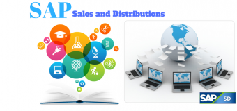 SAP Sales and Distribution Process