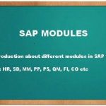 SAP IS modules
