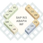 Introduction To SAP Modules and Overview Of SAP