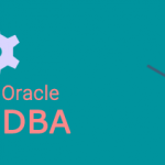 Oracle DBA USERS