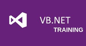 Visual Basic .NET  Training