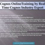 Cognos Features and impotance of cognos