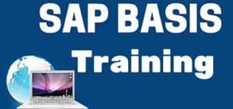 SAP BASIS Training – Introducing SAP Web Dispatcher