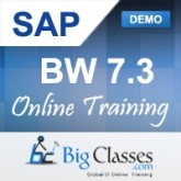 sap bw online course