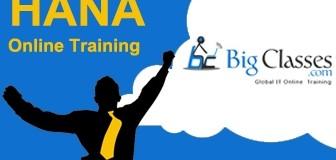 Reporting in SAP HANA