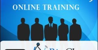 informatica online course
