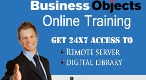 learn sap bo online course