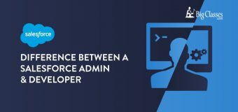 How Can both Salesforce Administrators and Developers Can Help The Companies?