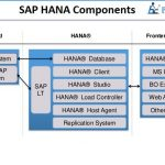 SAP HANA Components