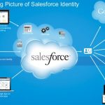 Who Should Study Salesforce?