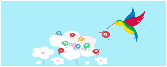 Google Hummingbird-Bigclasses